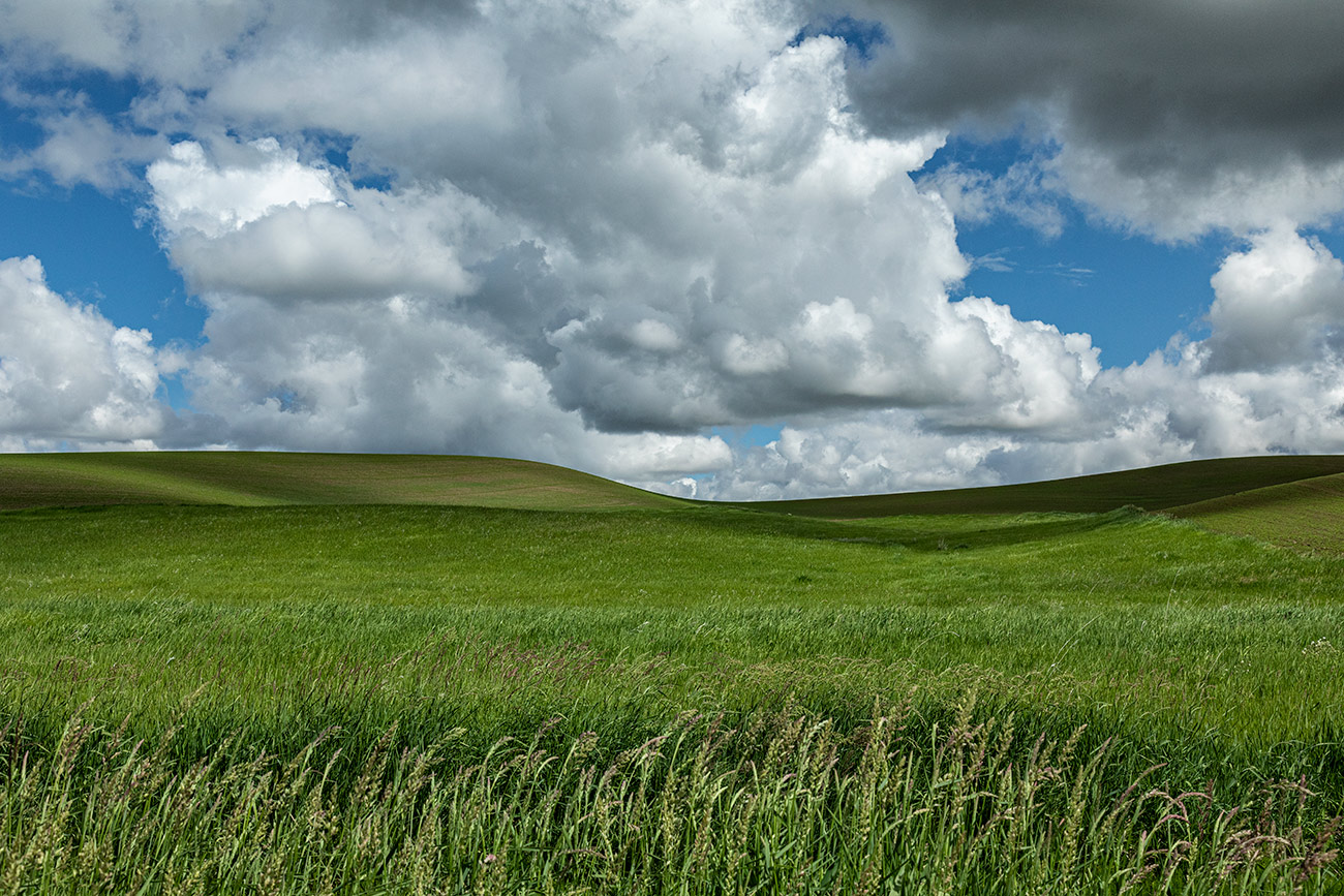 palouse_2019_workshop_46
