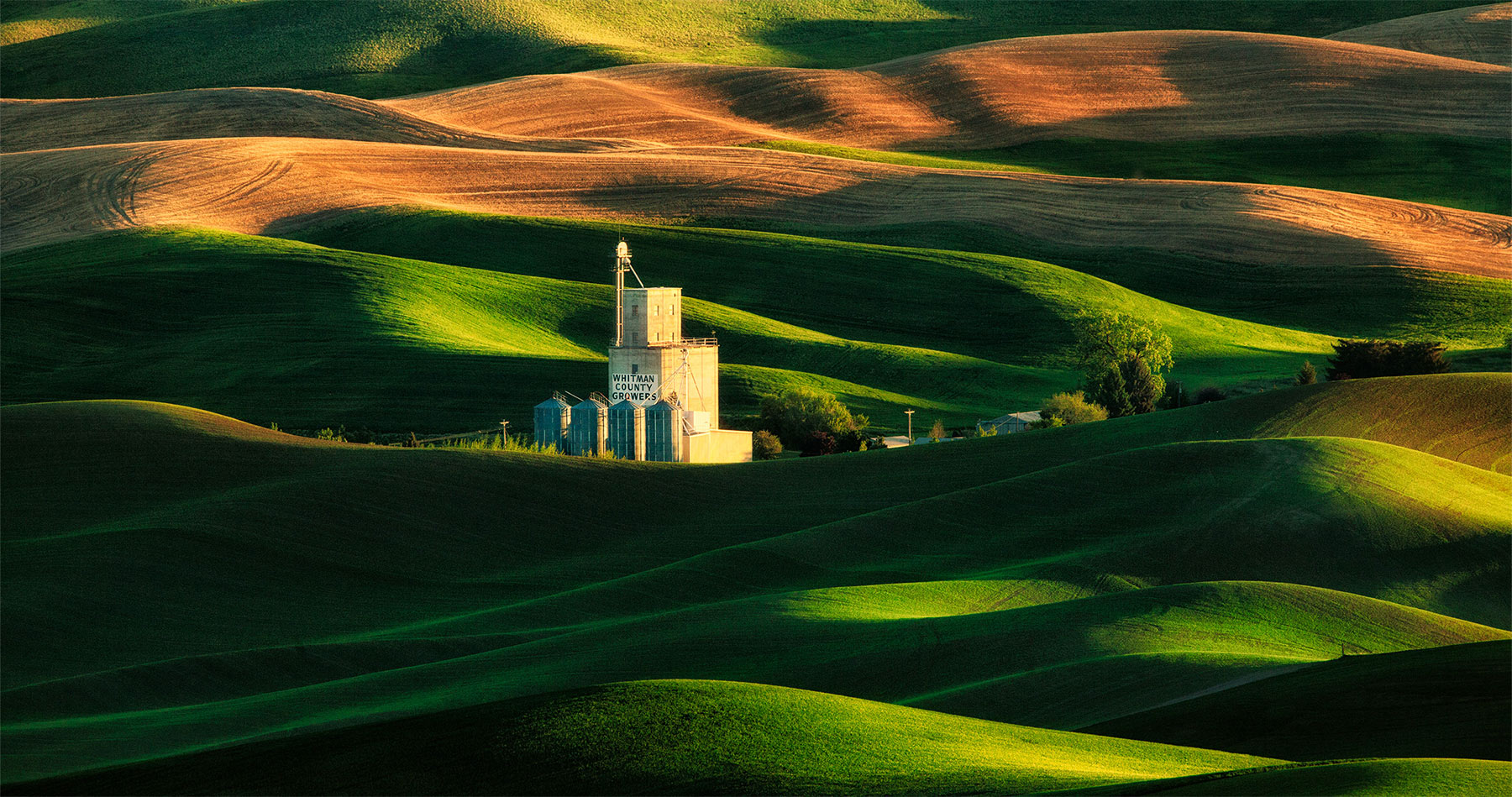 palouse_wheatfields_rolling_hills_sunset_intro