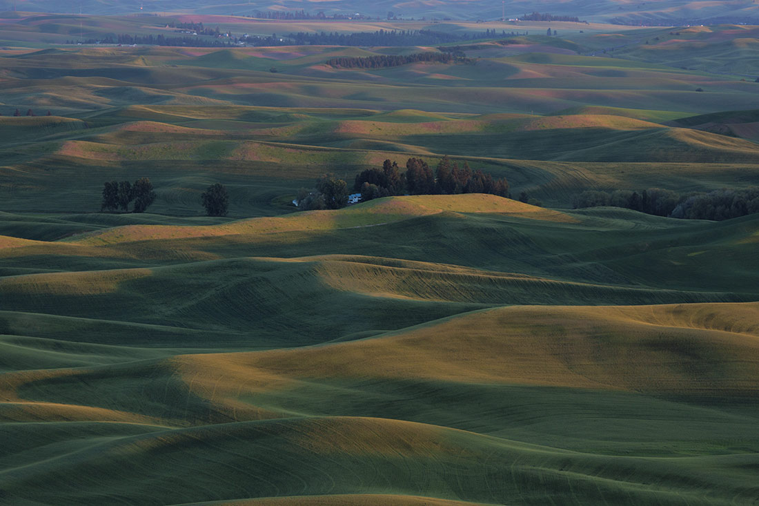 palouse_workshop_004