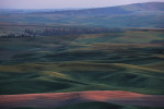 palouse_workshop_036