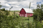 palouse_workshop_052