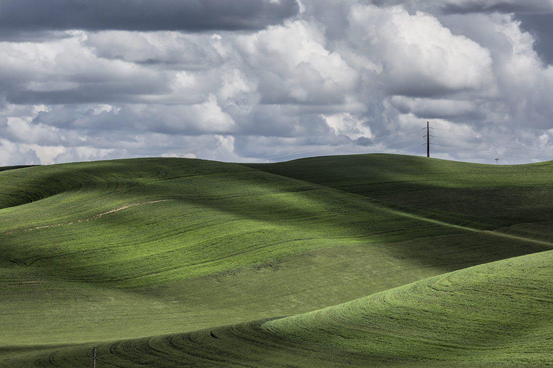 palouse_workshop_074