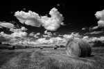 palouse_workshop_075