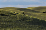 palouse_workshop_084