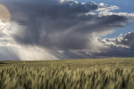 palouse_workshop_087