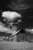 palouse_workshop_096