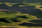 palouse_workshop_101