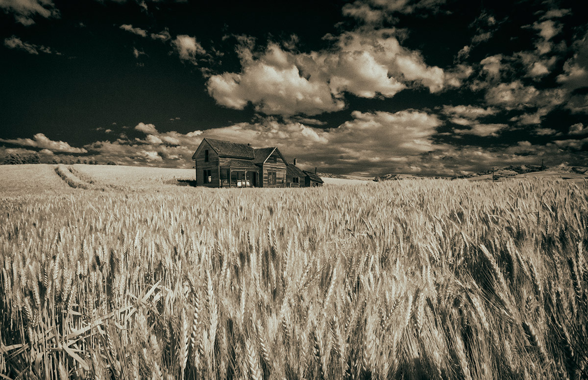 palouse_workshop_2015_32