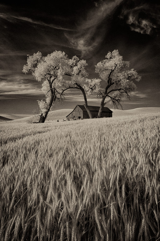 palouse_workshop_2015_33