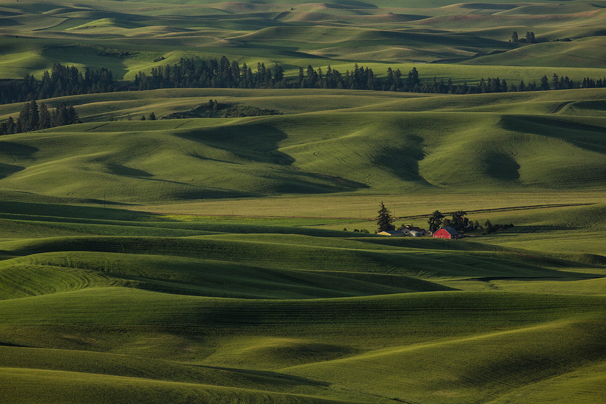 palouse_workshop_2015_35