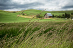 palouse_workshops_2014_003