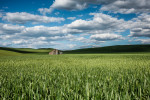 palouse_workshops_2014_019