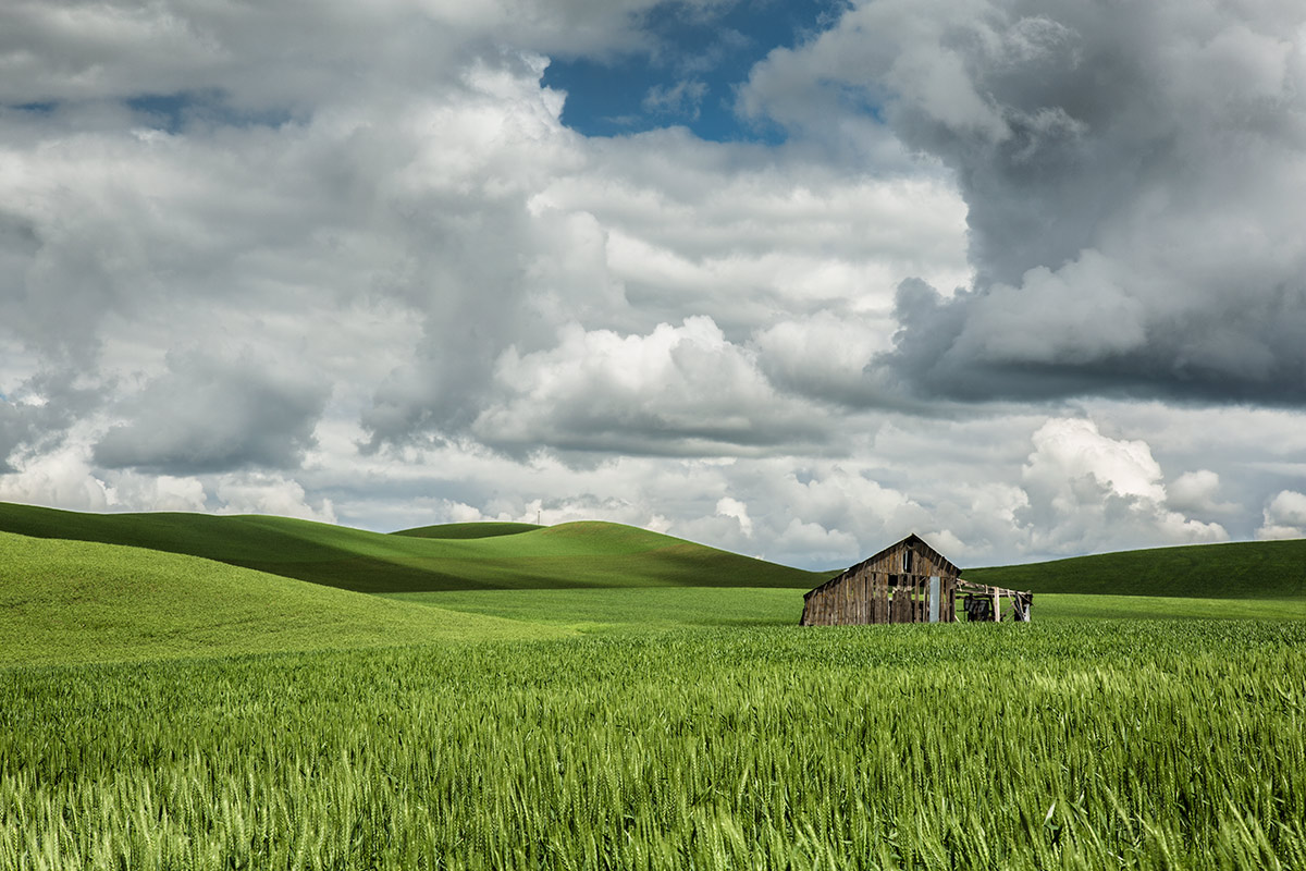 palouse_workshops_2014_020
