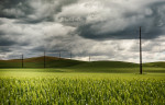 palouse_workshops_2014_023