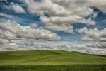 palouse_workshops_2014_042