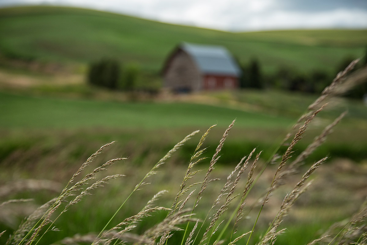 palouse_workshops_2014_078