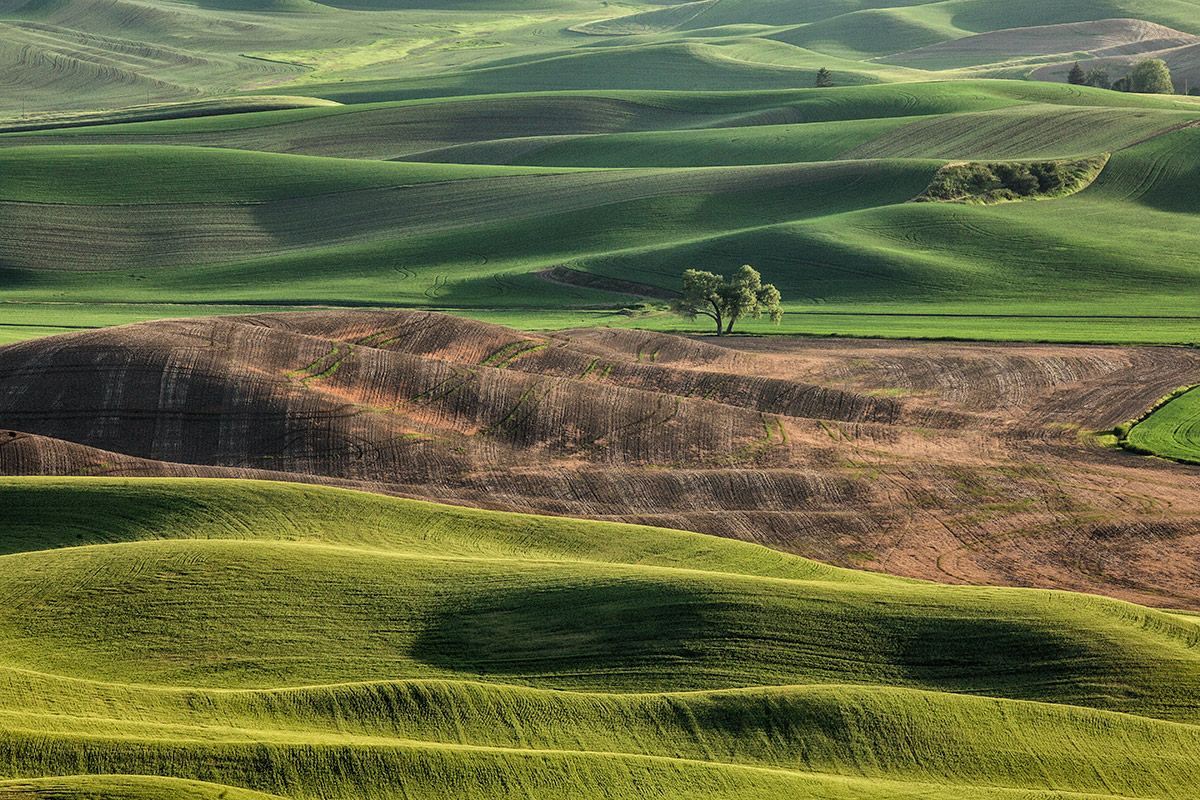 palouse_workshops_2014_086