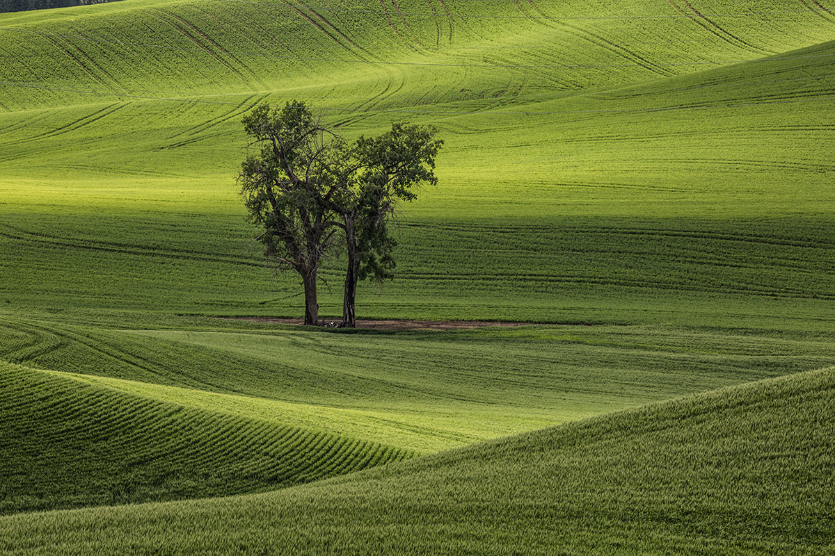 palouse_workshops_2014_101