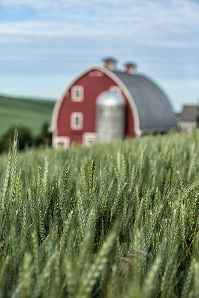 palouse_workshops_2014_112