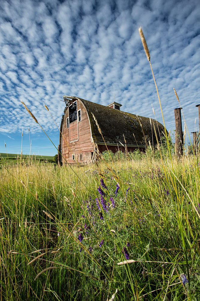 palouse_workshops_2014_117