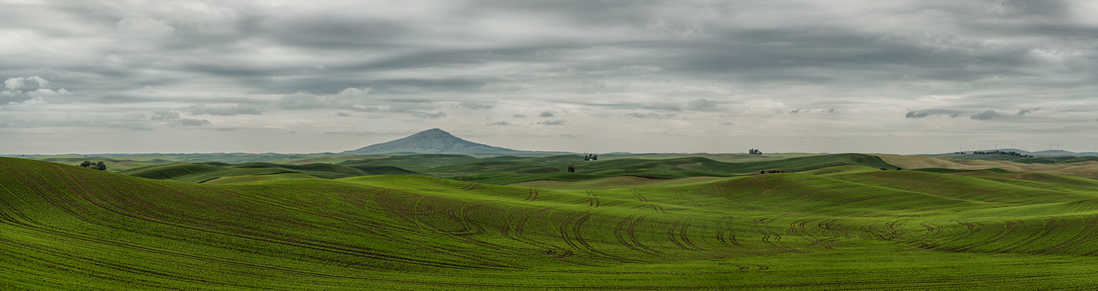 palouse_workshops_2014_133
