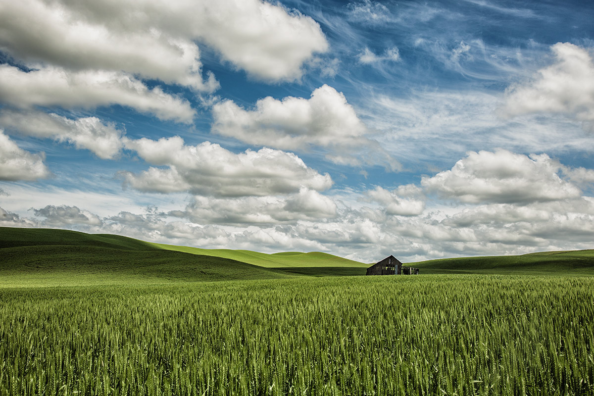 palouse_workshops_2014_142