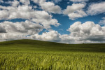 palouse_workshops_2014_146