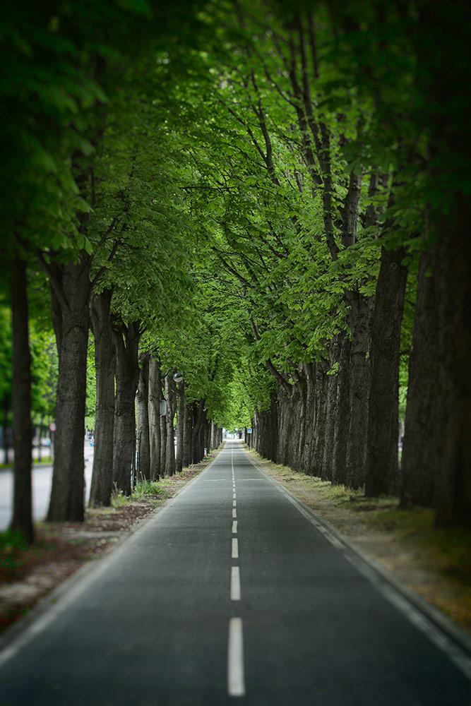 paris_2014_051