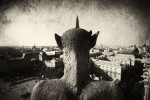 Atop the Notre Dame Cathedral in Paris