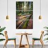 redwoods_interior