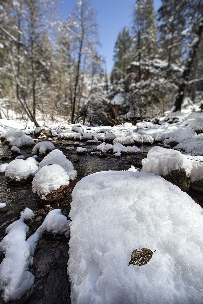 the west fork with fresh snow, sedona, arizona