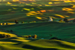 steptoe_sweet_palouse