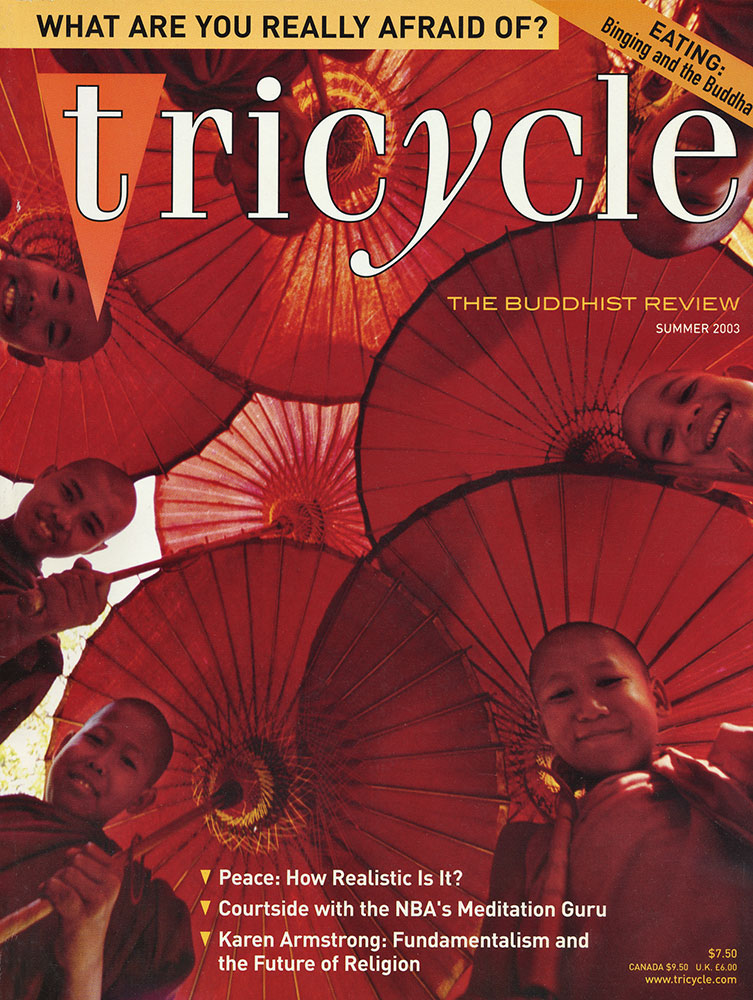 Cover for Tricycle Magazine