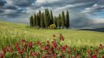tuscany_val_dorcia_intro_show_1400p