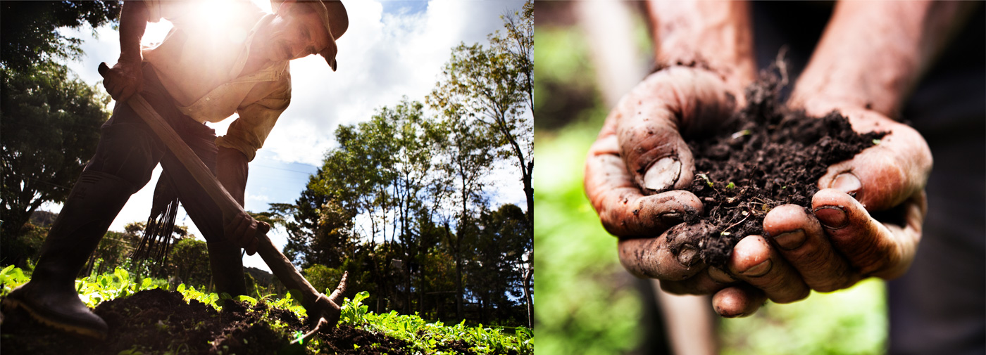 Colombia_Soil