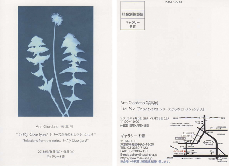 DANDELION Tosei Gallery Postcard, Ann Giordano Solo Exhibit Tokyo JAPAN, September 2013. Color Image Copyright © 2007 Ann Giordano All Rights Reserved.