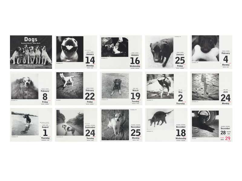 Taschen Dogs Calendar, Raymond Merritt and Miles Barth.  Various BW Images Copyright © 1995 - 2003 Ann Giordano  All Rights Reserved.  For reproduction rights and license fees, please contact licensing at anngiordano.com