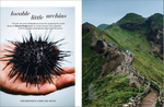 From an editorial travel story on sea urchin fishermen on Japan's northernmost island.