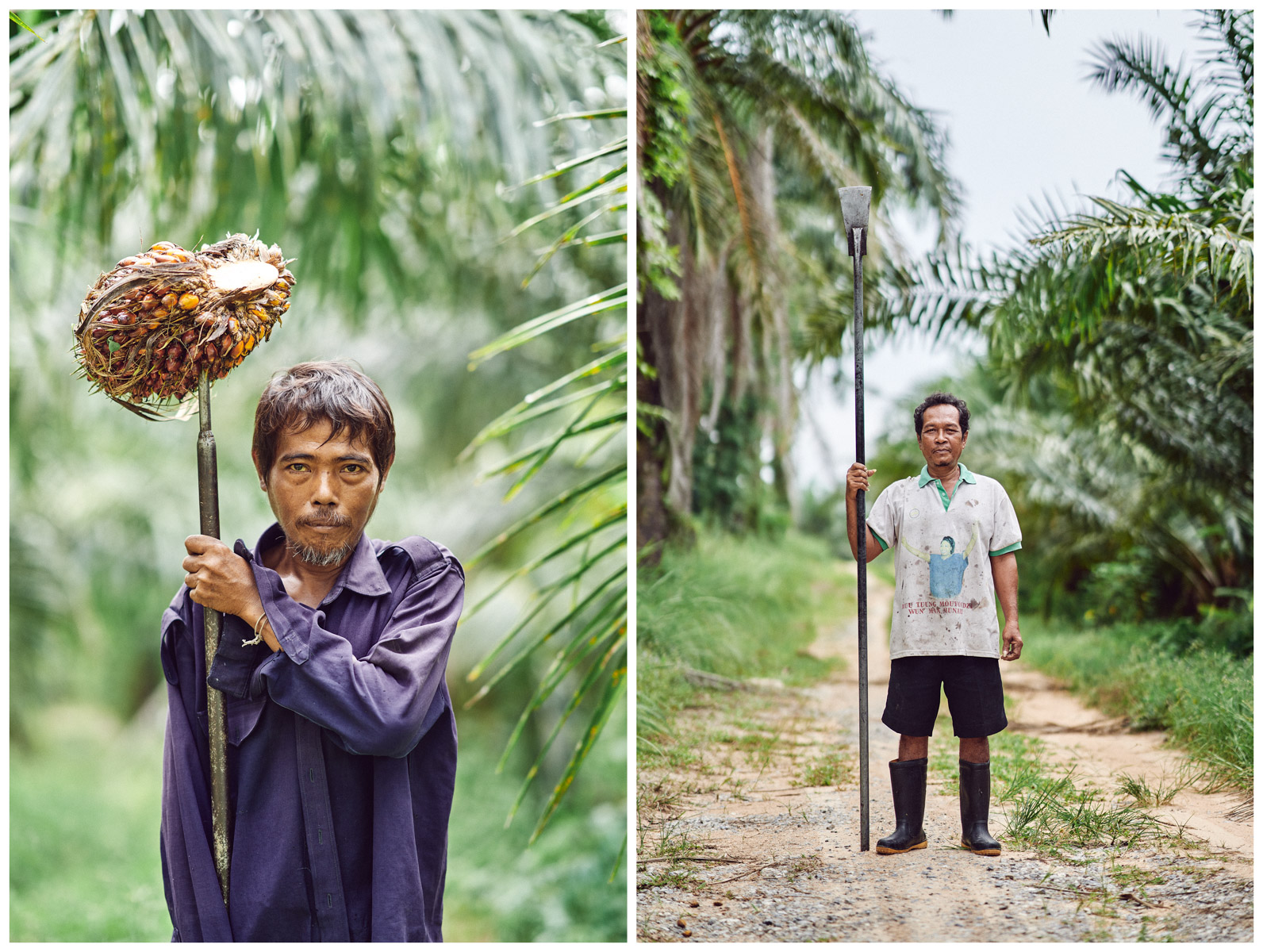 Portraits of two workers on a palm oil plantation in Surat Thani in southern Thailand.