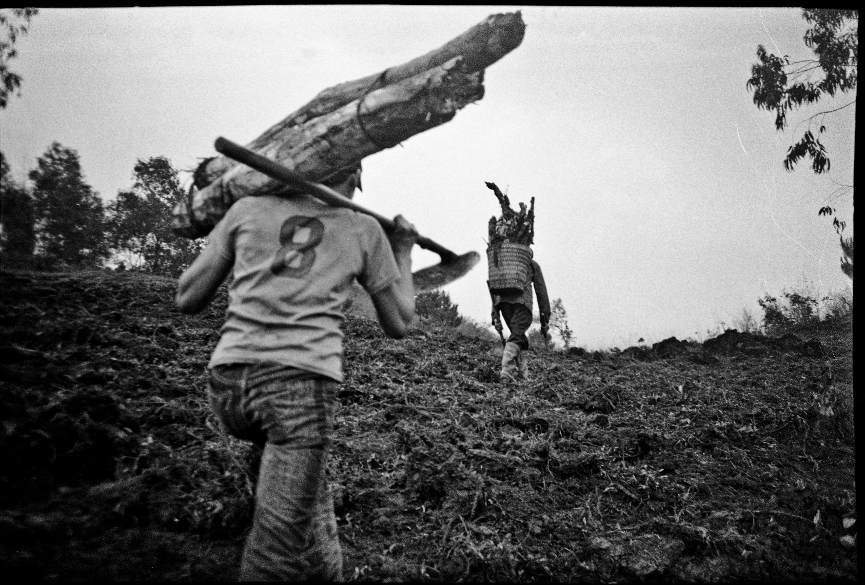 Two men transport firewood along a mountainside in Ha Giang Province in northern Vietnam.