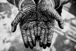 A young bride's Henna'd hands bearing her husband's name in Delhi, India.