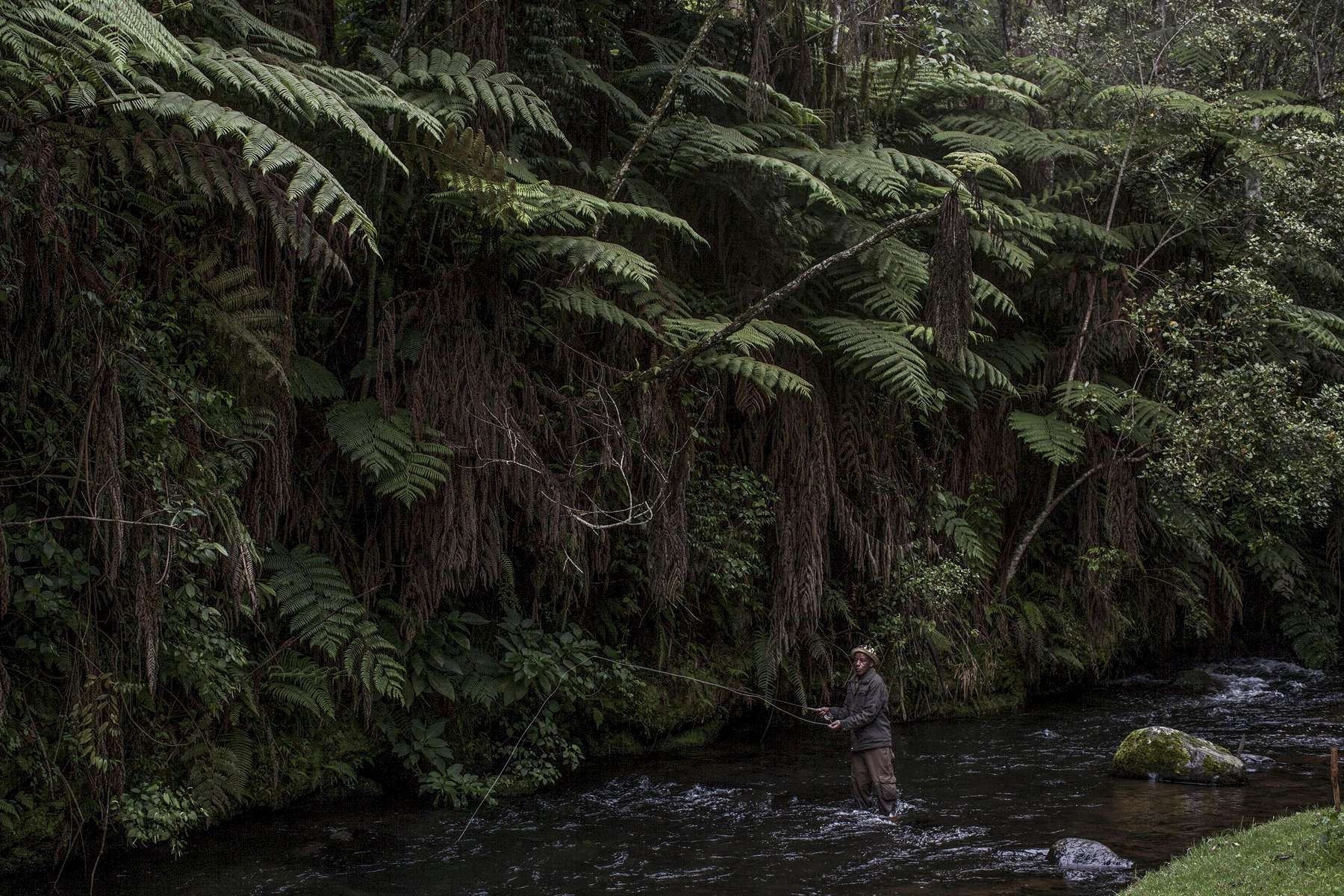 John Ngaii Moses casts his line in a trout-rich beat of the northern Mathioya River. The terrain around the river varies, from clear-agricultural fields to dense rainforests.