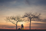 silhouette of couple embracing between two trees during sunset at the outer harbor in Buffalo NY during their wedding anniversary