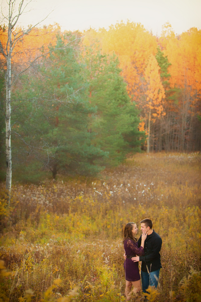 engagement photography fall foliage in field autumn colors Buffalo NY