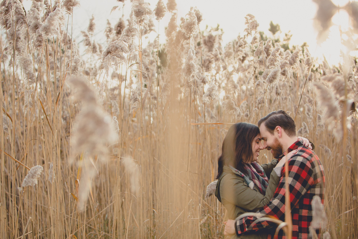 future bride and groom hug while touching foreheads among cat tails in field during their wedding engagement photography session at Tifft Nature Preserve in Buffalo, NY