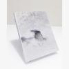dana_mueller_may_days_book