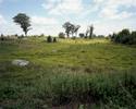 Gettysburg field, Adams County, Pennsylvania, 2009