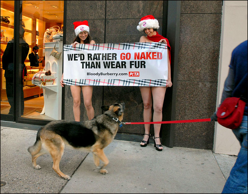 <b>Protesters from PETA (People for the Ethical Treatment of Animals) get out a holiday message.</b>