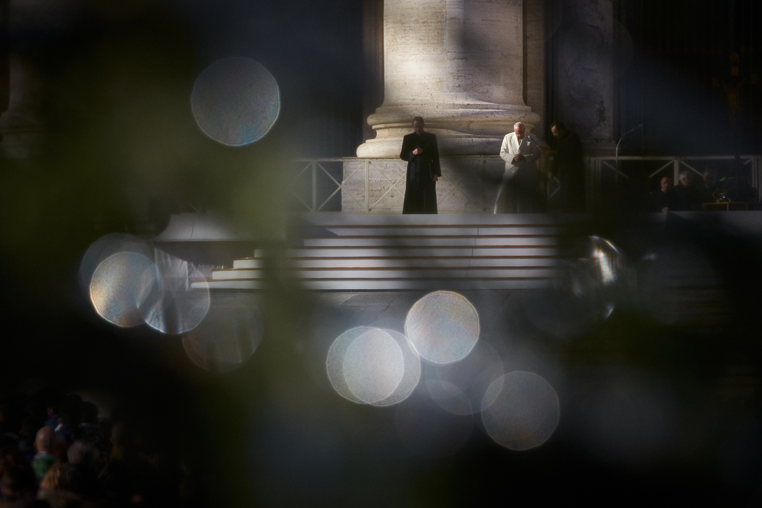 Pope Francis is framed through the branches of the Christmas tree in St. Peter's Square during a general audience.