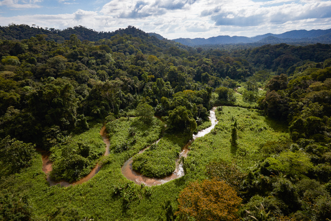 The valley in the Mosquitia jungle hosting remains of an ancient lost city, hidden under the forest canopy.